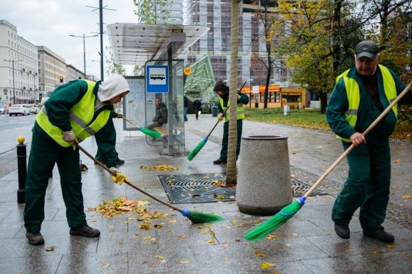 Pracownicy firmy porządkowej zamiatają liście na przystanku autobusowym